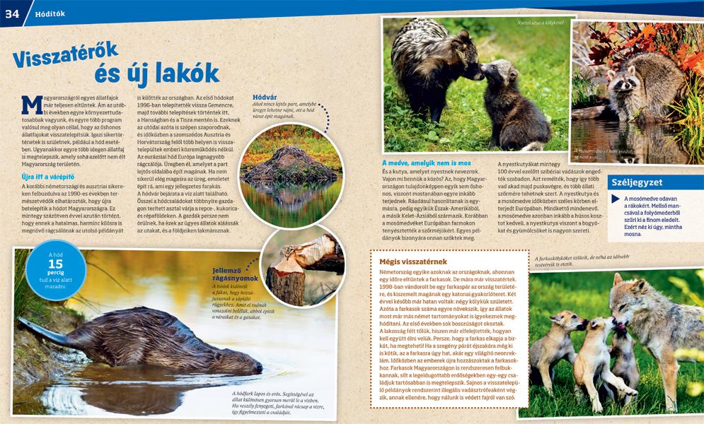 Meghívó a MOÁE és a MÁVSZ közös rendezvényére – Állatorvostudományi Egyetem Közös előkészítő állat